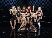 WWE Divas (3ª Temporada) - Poster / Capa / Cartaz - Oficial 1