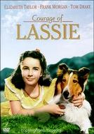 A Coragem de Lassie (Courage of Lassie)
