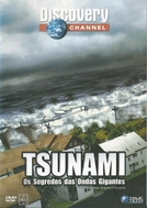 Tsunami : Os Segredos das Ondas Gigantes (The Next Wave: Science of Tsunamis)