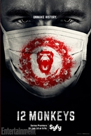 12 Monkeys (1ª Temporada)