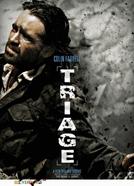 Testemunhas de Uma Guerra (Triage)