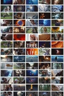 A Árvore da Vida - Poster / Capa / Cartaz - Oficial 3