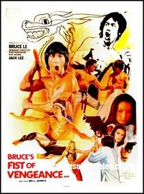 O Segredo de Bruce Lee - Poster / Capa / Cartaz - Oficial 1