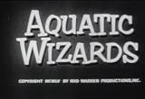 Aquatic Wizards - Poster / Capa / Cartaz - Oficial 1