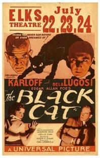 O Gato Preto - Poster / Capa / Cartaz - Oficial 5