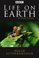 A Vida Na Terra (Life on Earth)