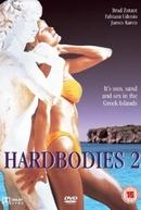 Aventuras no Paraíso (Hardbodies 2)