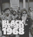 Os Panteras Negras (Black Panthers)