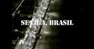 Se liga, Brasil (Se liga, Brasil)
