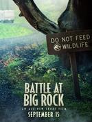 Battle at Big Rock (Battle at Big Rock)