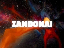 The Real Zandonai - Poster / Capa / Cartaz - Oficial 1