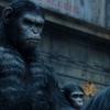 Planeta dos Macacos: O Confronto (REVIEW)