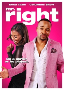Mr. Right - Poster / Capa / Cartaz - Oficial 1