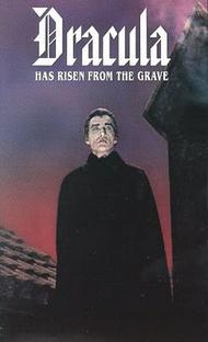 Drácula, o Perfil do Diabo - Poster / Capa / Cartaz - Oficial 4