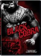 Black Cobra (Black Cobra)