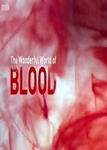 O Maravilhoso Mundo do Sangue - Poster / Capa / Cartaz - Oficial 1
