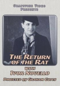 The Return of the Rat - Poster / Capa / Cartaz - Oficial 1