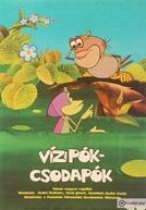 A Incrível Aranha d'água (Vizipók-Csodapók)