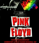 Pink Floyd - Toronto Pearson Airport A Momentary Lapse Of Reason Rehearsal 1987 (Pink Floyd - Toronto Pearson Airport A Momentary Lapse Of Reason Rehearsal 1987)
