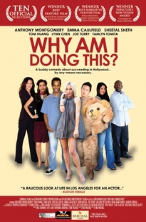 Why Am I Doing This? - Poster / Capa / Cartaz - Oficial 1