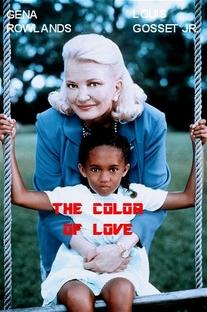 A Cor do Amor: A História de Jacey - Poster / Capa / Cartaz - Oficial 1