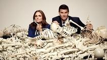Bones (12ª Temporada) - Poster / Capa / Cartaz - Oficial 2