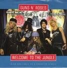 Guns N' Roses: Welcome to the Jungle (Guns N' Roses: Welcome to the Jungle)