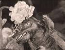 O Dragãozinho Manso: Jonjoca (O Dragãozinho Manso: Jonjoca)