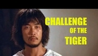 Wu Tang Collection: Challenge Of The Tiger