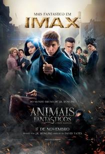 Animais Fantásticos e Onde Habitam - Poster / Capa / Cartaz - Oficial 24