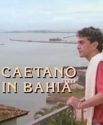 Caetano na Bahia - Poster / Capa / Cartaz - Oficial 1