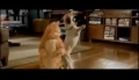 Garfield Trailer