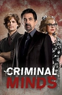 Mentes Criminosas (14ª Temporada) (Criminal Minds (Season 14))