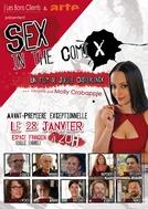 Sexo nos Quadrinhos (Sex in the Comics)