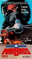 Ases da Guerra (Warbirds)