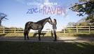 Zoe e Raven (2ª  Temporada) (Free Rein (2ª Temporada))