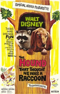 The Hound That Thought He Was A Raccoon - Poster / Capa / Cartaz - Oficial 1