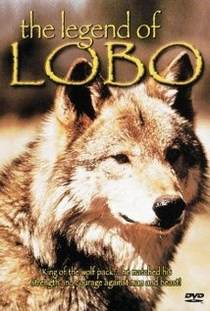 A Montanha do Lobo Solitário - Poster / Capa / Cartaz - Oficial 1