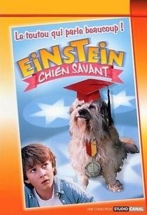 Meu Amigo Einstein - Poster / Capa / Cartaz - Oficial 1