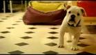 Tresor 2009 Trailer.flv