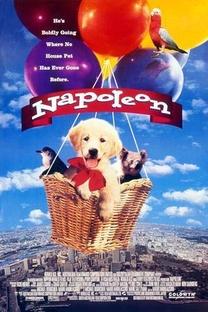 Napoleon - As Aventuras de um Cãozinho Valente - Poster / Capa / Cartaz - Oficial 1