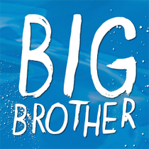 Big Brother US (15ª Temporada) - Poster / Capa / Cartaz - Oficial 3