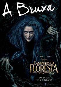 Caminhos da Floresta - Poster / Capa / Cartaz - Oficial 11
