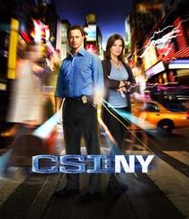 CSI: Nova York - 9ª temporada - Poster / Capa / Cartaz - Oficial 1