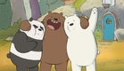 Ursos Sem Curso Todas as chamadas #pilhadeursos
