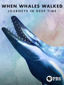 Quando Baleias Caminhavam - Poster / Capa / Cartaz - Oficial 2
