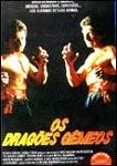 Os Dragões Gêmeos - Poster / Capa / Cartaz - Oficial 1