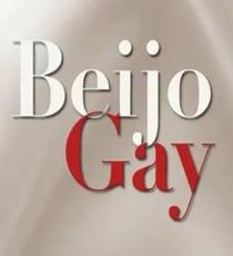 Beijo Gay na Novela - Poster / Capa / Cartaz - Oficial 1