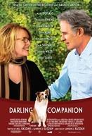 Querido Companheiro (Darling Companion)