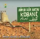 Dentro de Kobane (Inside Kobane)